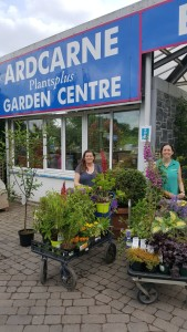 Picking up plants from Ardcarne Garden Centre