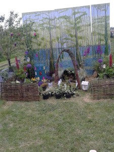 Grainne's fairy garden picture trial run